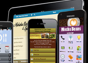 Website & Mobile Site Development